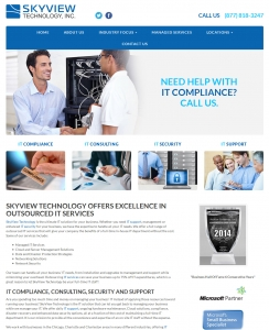 SkyView Technology | Chicago IL